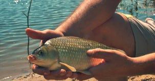 El padre y el hijo felices están pescando, las ayudas del hijo que su padre saca los pescados cogidos, lleva el colector de los p almacen de video