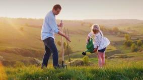 El padre y la hija trabajan juntos Plantan un almácigo del árbol en un lugar pintoresco El padre cava un agujero, metrajes