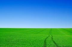 El paisaje. Foto de archivo