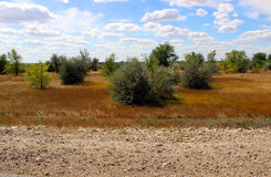 El paisaje Foto de archivo libre de regalías