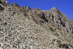 El paisaje alpino rugoso de las Belces marrón y los alces se extienden, Colorado, Rocky Mountains Imágenes de archivo libres de regalías
