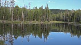 El paisaje asombroso de la naturaleza de la antena 4k tiró del lago de la calma de Yellowstone, bosque, géiser almacen de video