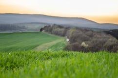 El paisaje de la colina Fotos de archivo