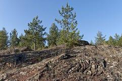 El paisaje de la naturaleza otoñal con la montaña, el bosque conífero y el rosk colocan en montaña balcánica Foto de archivo