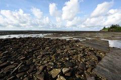 El paisaje de la playa Imágenes de archivo libres de regalías