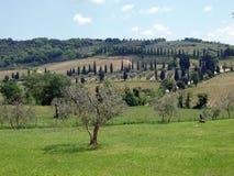 El paisaje de la Toscana Imágenes de archivo libres de regalías