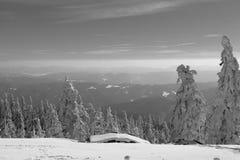 El paisaje de Lysa Hora en el color blanco y negro Fotografía de archivo libre de regalías