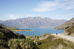 El paisaje de Nueva Zelanda Imagenes de archivo