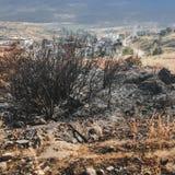 El paisaje de quema el bosque fotos de archivo