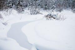 El paisaje del arroyo en el bosque hermoso del invierno o en el parque entre los árboles debajo de la nieve, hielo foto de archivo libre de regalías