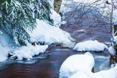 El paisaje del arroyo en el bosque hermoso del invierno o en el parque entre los árboles debajo de la nieve, hielo imágenes de archivo libres de regalías