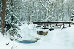 El paisaje del arroyo y de la pasarela en el bosque hermoso del invierno o en el parque entre los árboles debajo de la nieve, hie fotos de archivo
