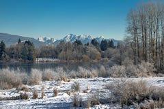 El paisaje del invierno Foto de archivo libre de regalías