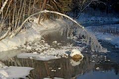 El paisaje del invierno de un río mitad-congelado y de un tronco fino de un abedul dobló abajo en el agua Foto de archivo libre de regalías