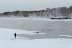 El paisaje del invierno en el parque de Kolomenskoye en Moscú fotos de archivo
