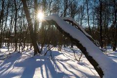 El paisaje del invierno en Rotes amarra Fotografía de archivo libre de regalías