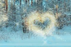 El paisaje del invierno, el ` s del sol irradia la forma una forma del corazón en las ramas de un árbol Fotografía de archivo