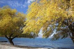 El paisaje del lago Imagen de archivo