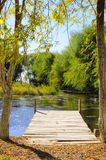 El paisaje del otoño cerca de un lago con amarillo se va en árboles en caída imagenes de archivo