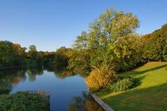 El paisaje del otoño con la pequeña charca Imágenes de archivo libres de regalías