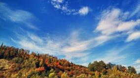 El paisaje del otoño de la montaña con el bosque colorido foto de archivo