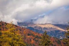 El paisaje del otoño de la montaña con el bosque colorido Fotos de archivo libres de regalías