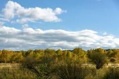 El paisaje del otoño de la pradera Imagenes de archivo