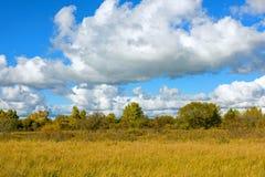 El paisaje del otoño de la pradera Imagen de archivo libre de regalías