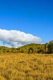El paisaje del otoño de la pradera Imagen de archivo