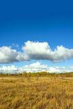 El paisaje del otoño de la pradera Fotografía de archivo