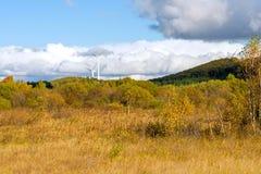 El paisaje del otoño de la pradera Fotografía de archivo libre de regalías