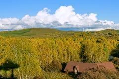 El paisaje del otoño de la pradera foto de archivo