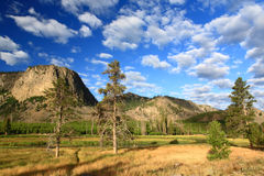 El paisaje del parque nacional de Yellowstone Imágenes de archivo libres de regalías