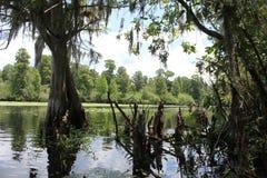El paisaje del río Imagen de archivo libre de regalías