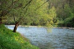 El paisaje del río dio Fotos de archivo libres de regalías