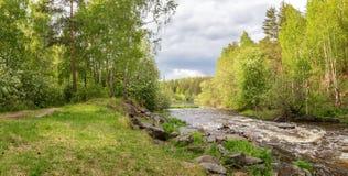 El paisaje del verano ayuna del río de Ural con los árboles en el banco de Rusia, junio Fotografía de archivo