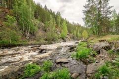 El paisaje del verano ayuna del río de Ural con los árboles en el banco de Rusia, junio Imágenes de archivo libres de regalías