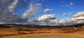 El paisaje espectacular del prado de Inner Mongolia Imagen de archivo