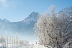 El paisaje fino de las montañas del invierno Día asoleado Disminución del invierno Los colores brillantes Río del bosque del bosq Foto de archivo