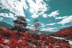 El paisaje granangular de la montaña en colores rojos artificiales vivos Imágenes de archivo libres de regalías