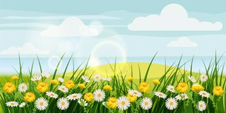 El paisaje hermoso de la primavera, campos, manzanilla florece, los dientes de león, nubes, estilo de la historieta, vector, ejem ilustración del vector