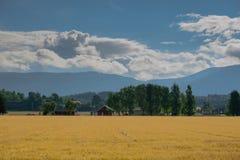 El paisaje hermoso de Noruega en el verano Fotos de archivo libres de regalías