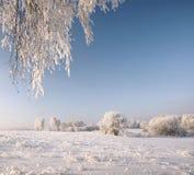 El paisaje hermoso del invierno Imagenes de archivo