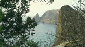 El paisaje hermoso del mar y de montañas a través del thuja ramifica Montañas del otoño en Crimea en el Mar Negro Cabo de Fiolent almacen de metraje de vídeo