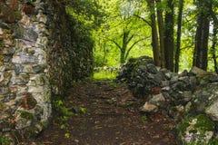 El paisaje hermoso Suiza de la naturaleza del maggia de Valle foto de archivo