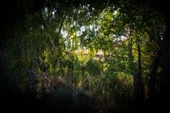 El paisaje I se destaca Foto de archivo libre de regalías