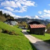 El paisaje idílico en las montañas con los prados verdes frescos y la montaña floreciente del flor y coronada de nieve remata en Foto de archivo libre de regalías