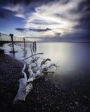 El paisaje marino de un pedazo de madera de deriva se lavó para arriba a lo largo de la costa costa en la puesta del sol tomada c imagenes de archivo