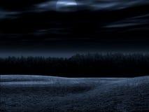El paisaje nocturno ilustración del vector