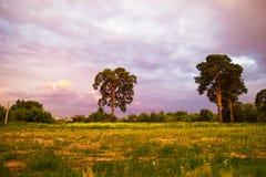 El paisaje rústico con los árboles y el cielo colorido en la puesta del sol fotos de archivo